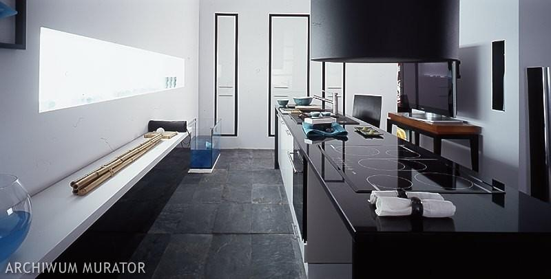 Galeria zdjęć  Czarno biała kuchnia  nowoczesne