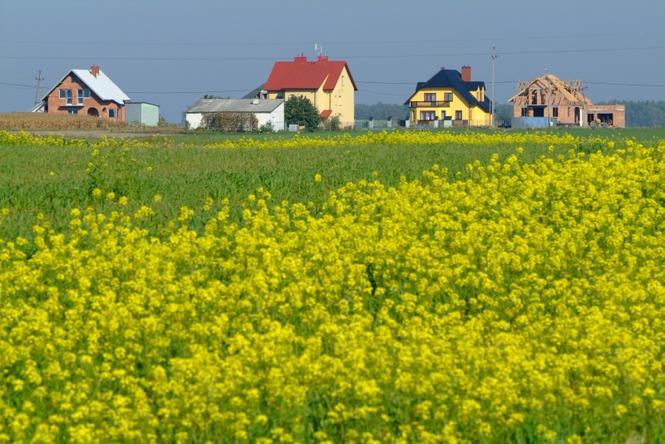 Grunty rolne a zabudowa jednorodzinna