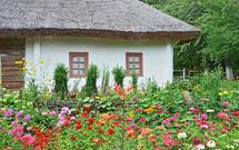 Jak urządzić ogród w stylu wiejskim? Pomysły na aranżację ogrodu