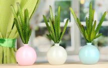 Kwiaty do sypialni. Jakie rośliny wybrać: aloes zwyczajny, sansewierię, kaktus?