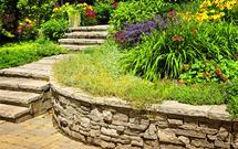 Kamień w ogrodzie. Jaki rodzaj kamienia ogrodowego najlepiej wybrać?